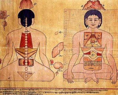 Buddhist Medical Sciences