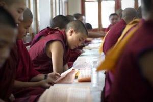 reading-scripture-young-ladakh-nun-17-5-2013-copy
